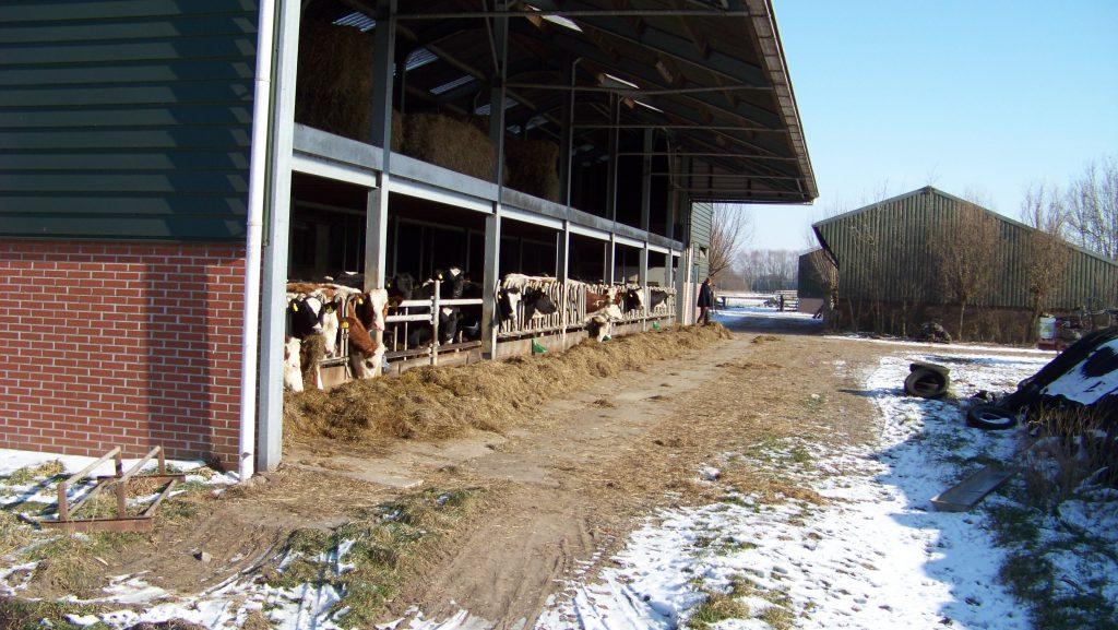 Potstal tijdens rondleiding op boerderij in de winter